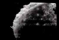 <i></i><br />Varbla 502 borehole, 132.10 m, Adavere Stage