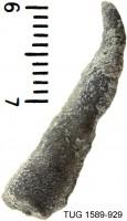 Heterotrypinae