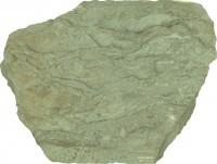 Agmata