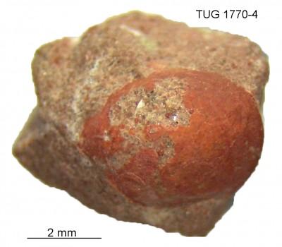, TUG 1770-4
